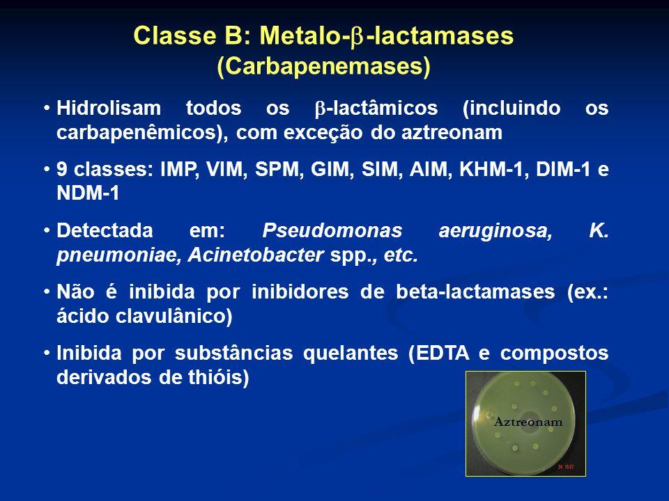 Classe B: Metalo--lactamases