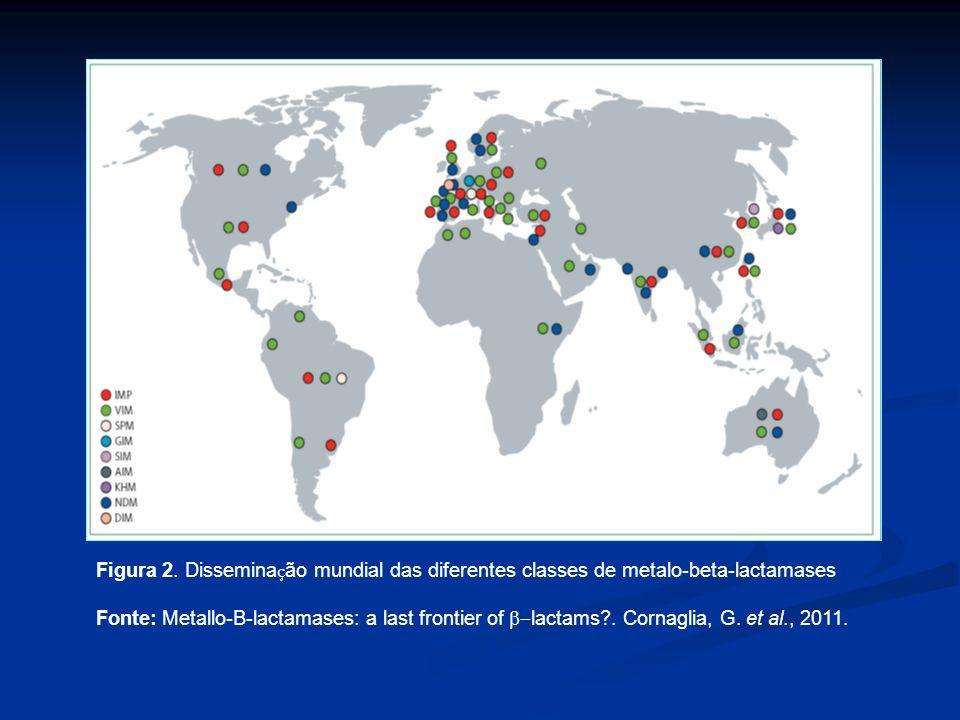 Figura 2. Disseminação mundial das diferentes classes de metalo-beta-lactamases