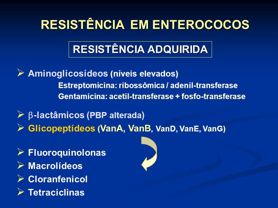 RESISTÊNCIA EM ENTEROCOCOS RESISTÊNCIA ADQUIRIDA