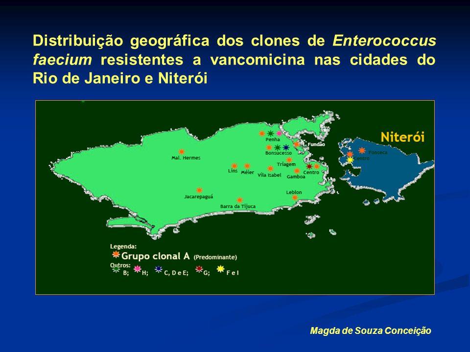 Distribuição geográfica dos clones de Enterococcus faecium resistentes a vancomicina nas cidades do Rio de Janeiro e Niterói