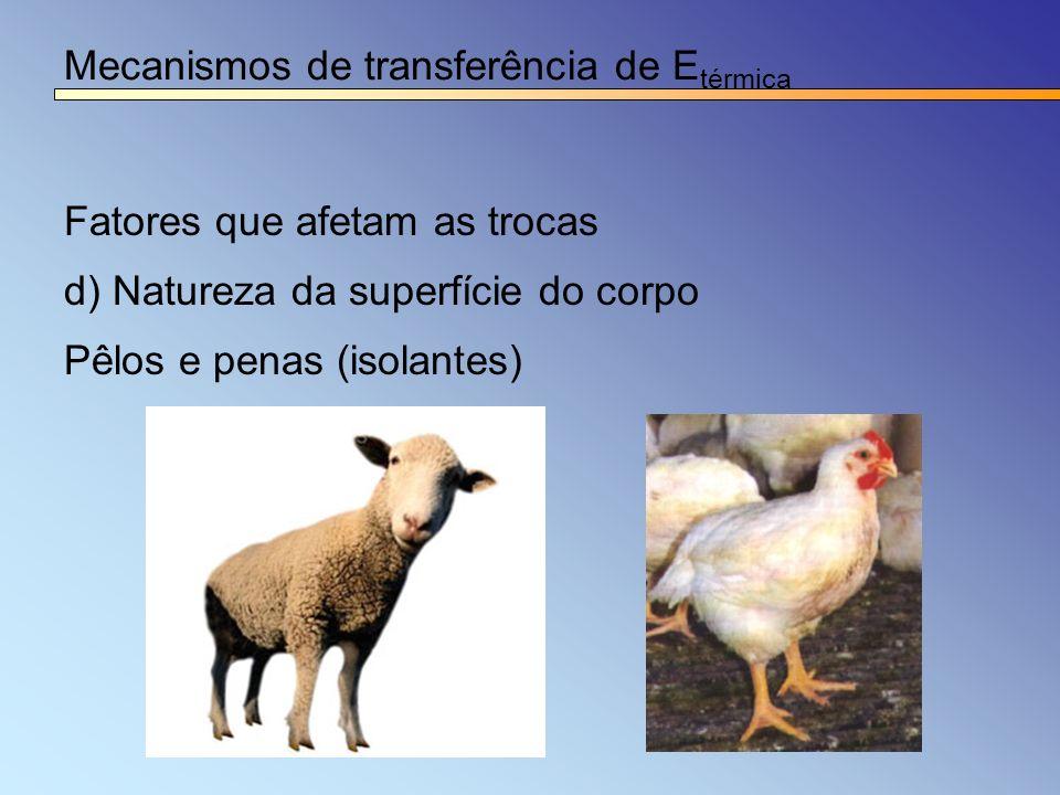 Mecanismos de transferência de Etérmica