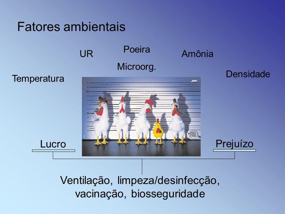 Ventilação, limpeza/desinfecção, vacinação, biosseguridade