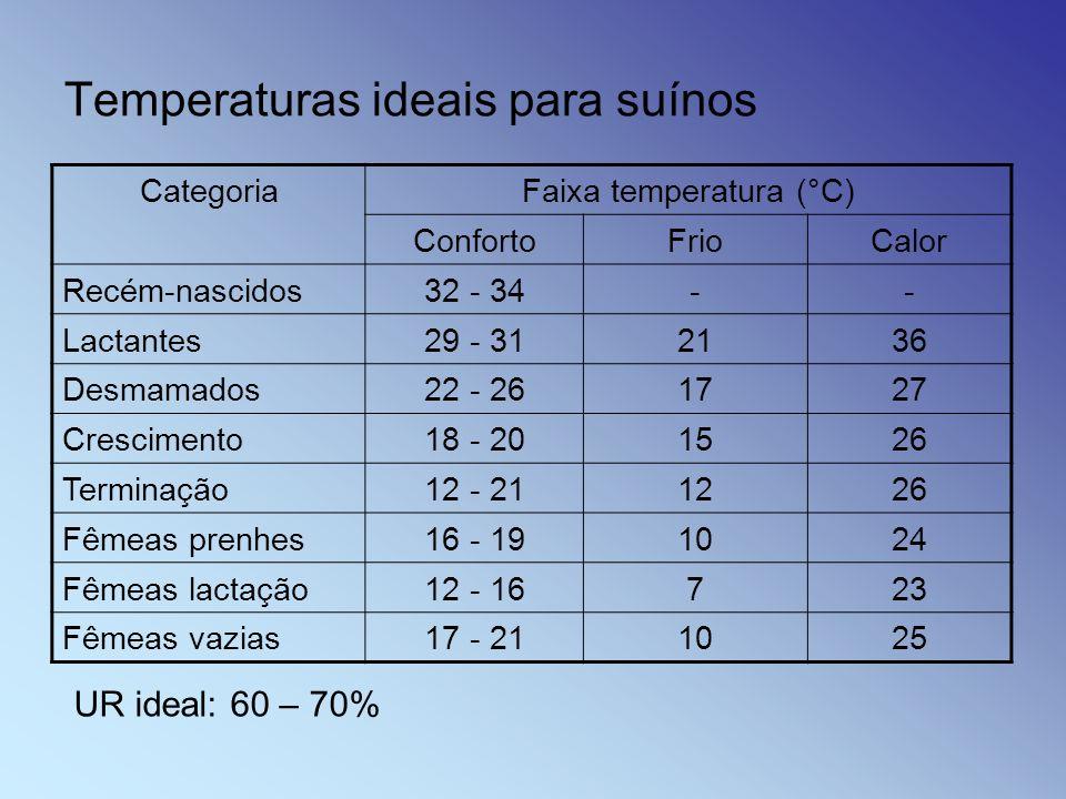Temperaturas ideais para suínos