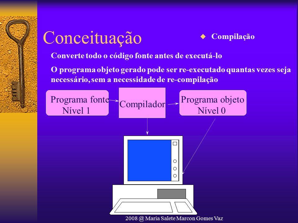 2008 @ Maria Salete Marcon Gomes Vaz