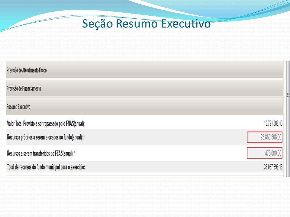Seção Resumo Executivo