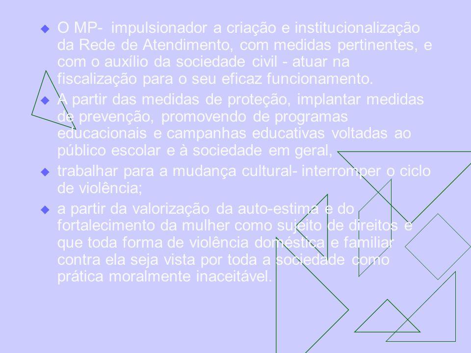 O MP- impulsionador a criação e institucionalização da Rede de Atendimento, com medidas pertinentes, e com o auxílio da sociedade civil - atuar na fiscalização para o seu eficaz funcionamento.