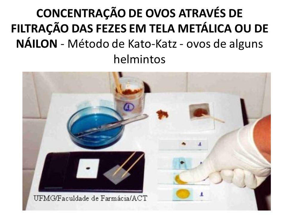 CONCENTRAÇÃO DE OVOS ATRAVÉS DE FILTRAÇÃO DAS FEZES EM TELA METÁLICA OU DE NÁILON - Método de Kato-Katz - ovos de alguns helmintos