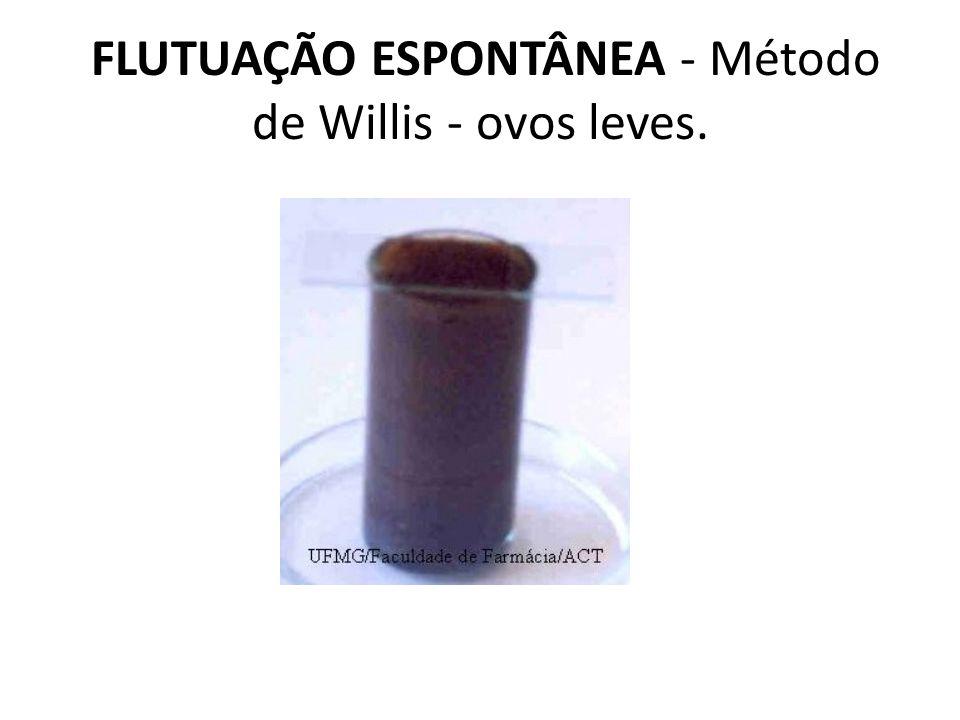 FLUTUAÇÃO ESPONTÂNEA - Método de Willis - ovos leves.