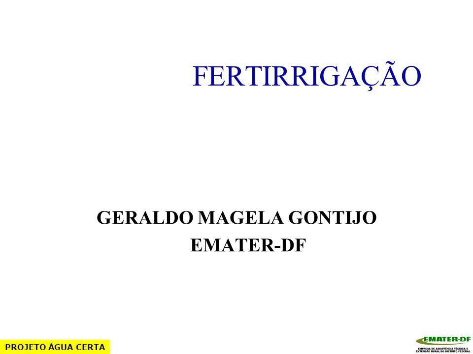 GERALDO MAGELA GONTIJO EMATER-DF