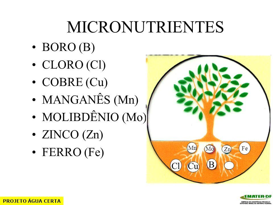 MICRONUTRIENTES BORO (B) CLORO (Cl) COBRE (Cu) MANGANÊS (Mn)
