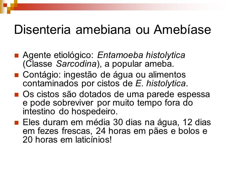 Disenteria amebiana ou Amebíase