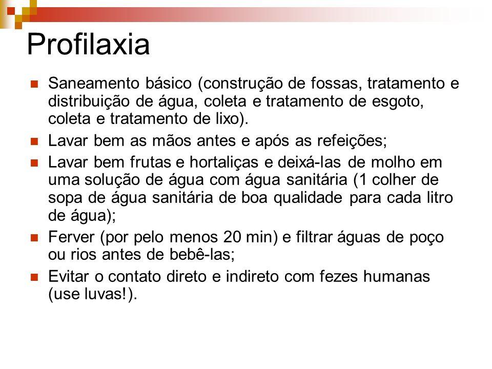 ProfilaxiaSaneamento básico (construção de fossas, tratamento e distribuição de água, coleta e tratamento de esgoto, coleta e tratamento de lixo).