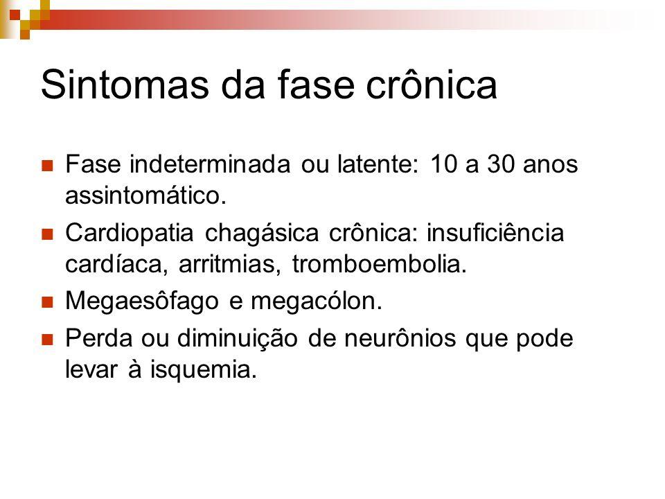 Sintomas da fase crônica