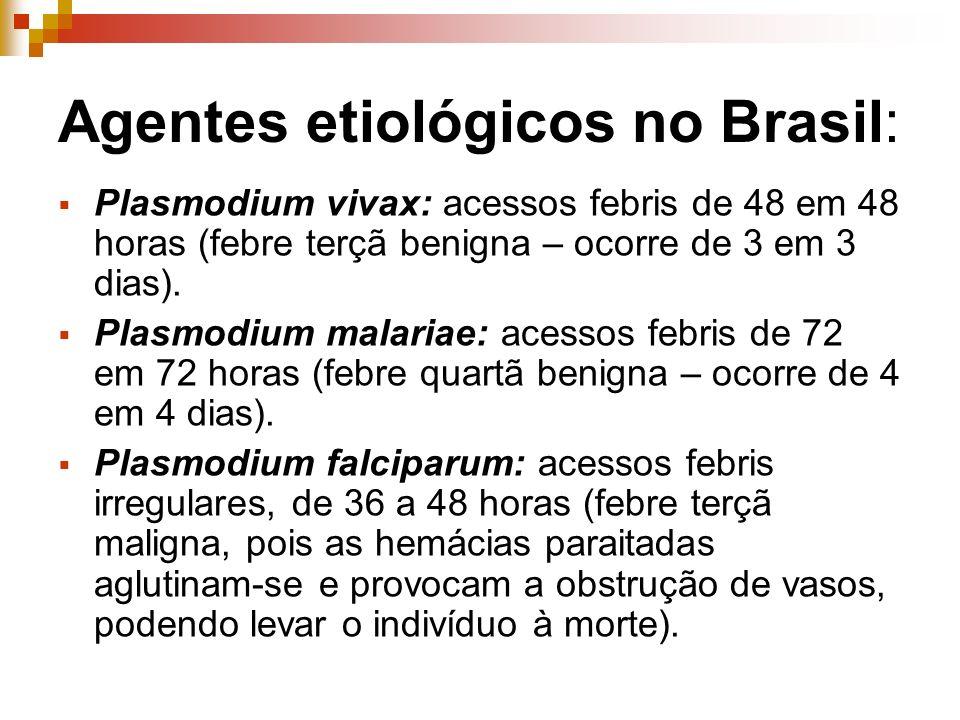 Agentes etiológicos no Brasil: