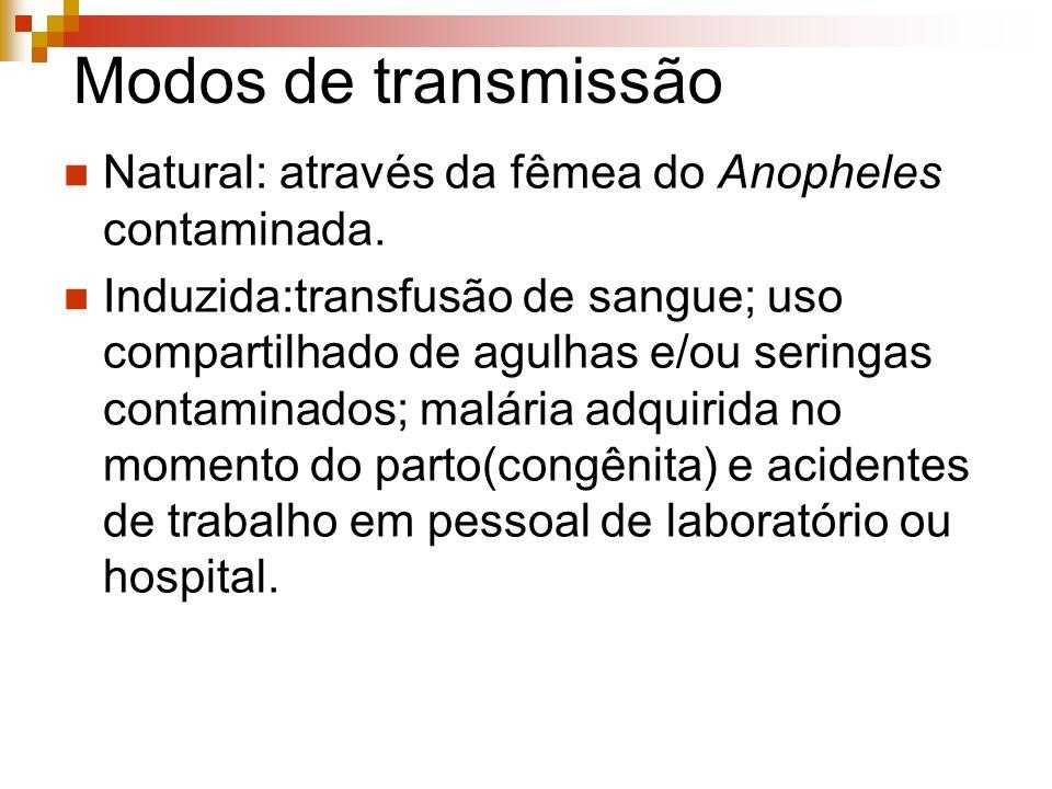 Modos de transmissão Natural: através da fêmea do Anopheles contaminada.
