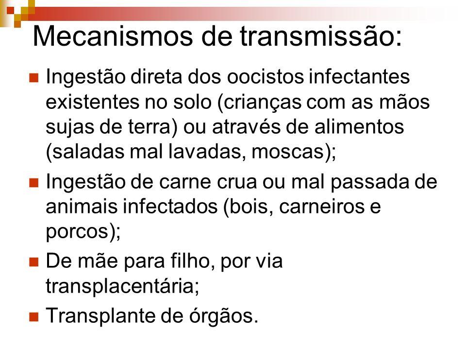 Mecanismos de transmissão: