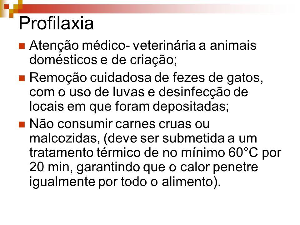 Profilaxia Atenção médico- veterinária a animais domésticos e de criação;