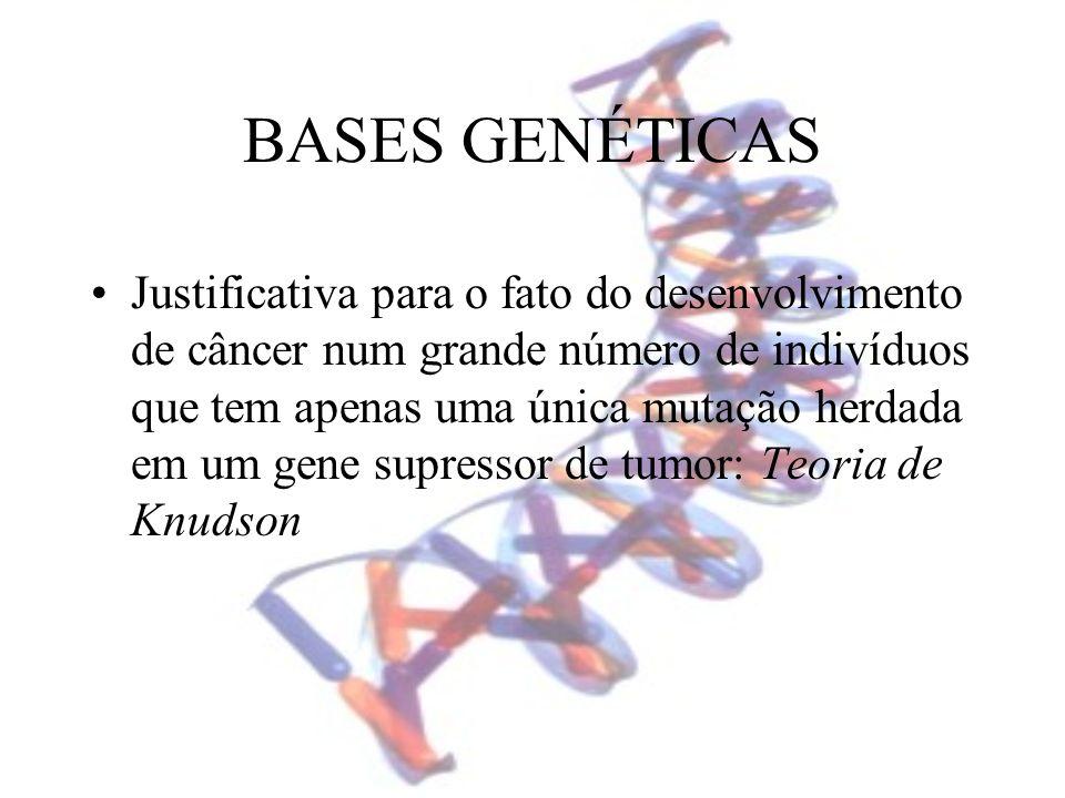 BASES GENÉTICAS