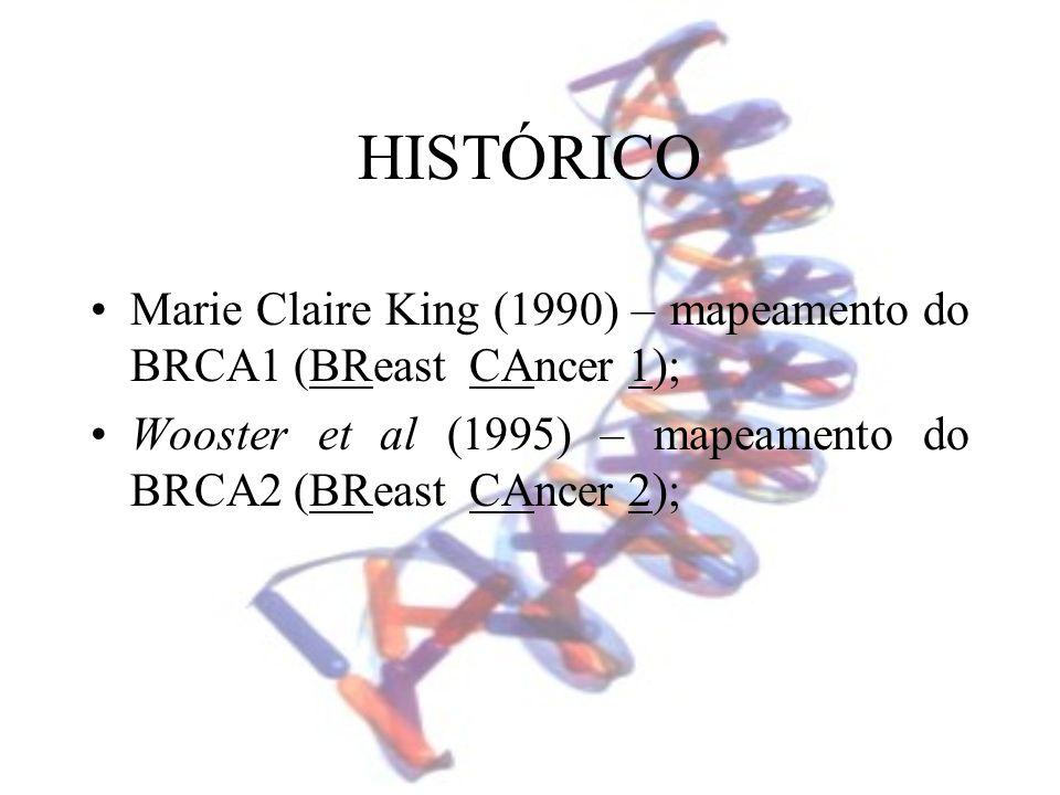 HISTÓRICOMarie Claire King (1990) – mapeamento do BRCA1 (BReast CAncer 1); Wooster et al (1995) – mapeamento do BRCA2 (BReast CAncer 2);