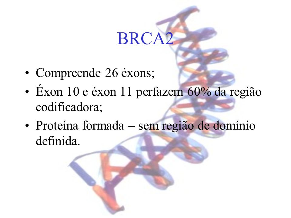 BRCA2 Compreende 26 éxons;