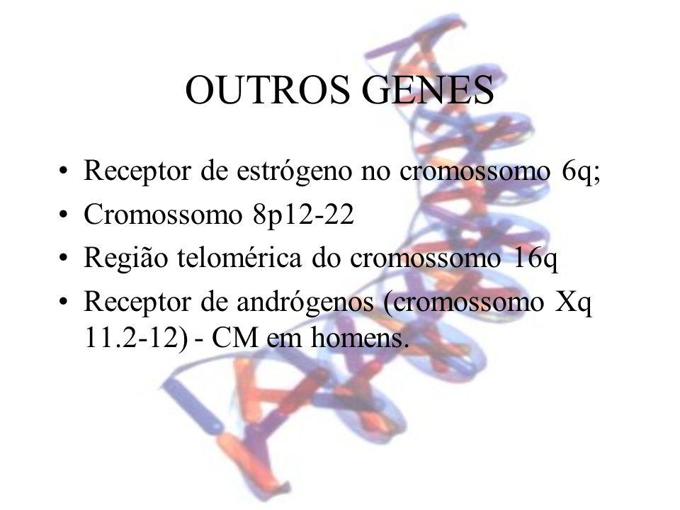 OUTROS GENES Receptor de estrógeno no cromossomo 6q;