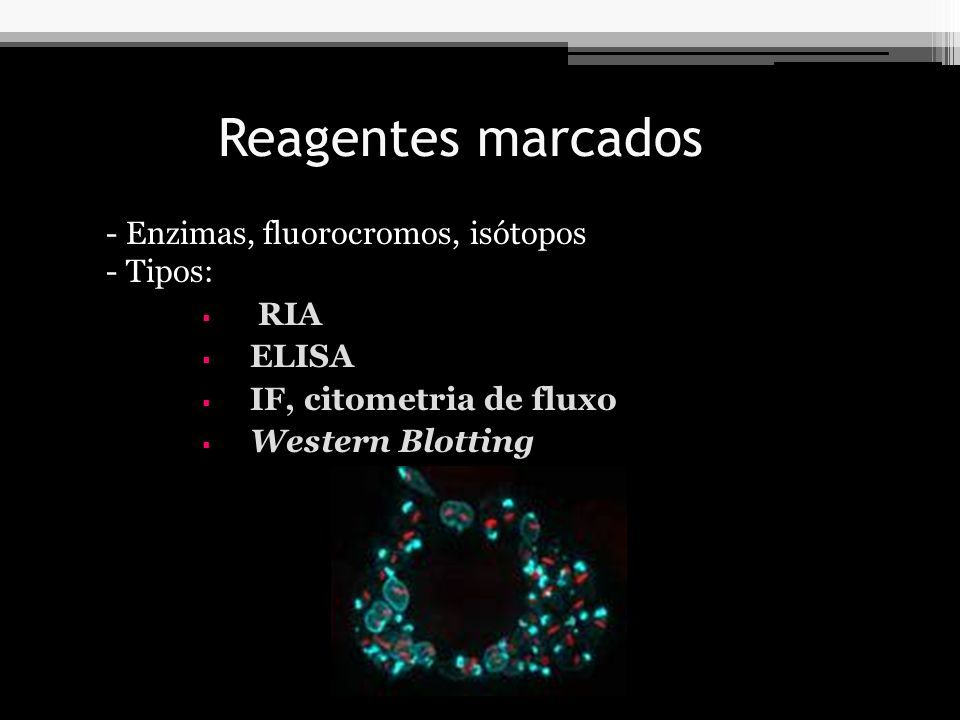 Reagentes marcados Enzimas, fluorocromos, isótopos Tipos: RIA ELISA