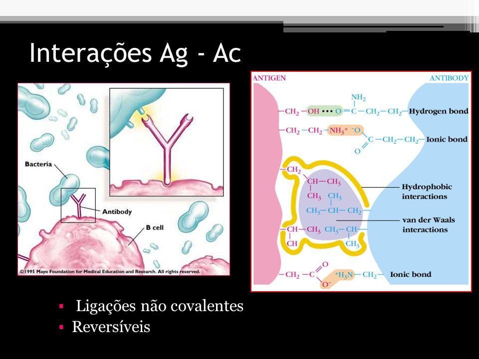 Interações Ag - Ac Ligações não covalentes Reversíveis
