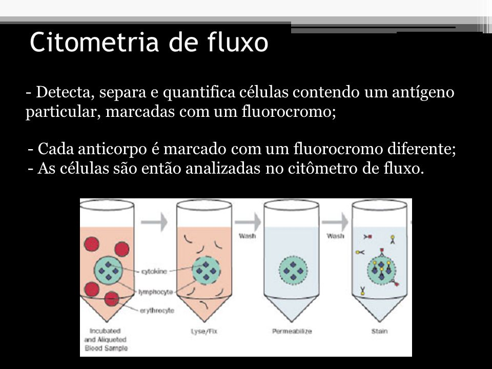 Citometria de fluxo Detecta, separa e quantifica células contendo um antígeno particular, marcadas com um fluorocromo;