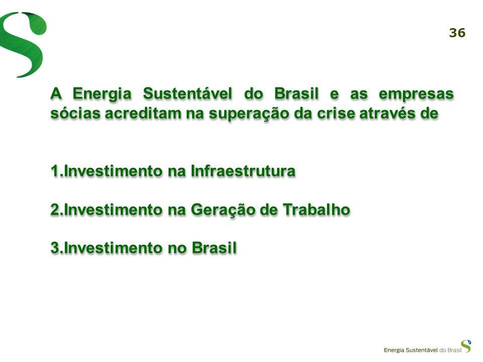 A Energia Sustentável do Brasil e as empresas sócias acreditam na superação da crise através de