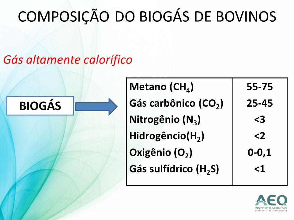 COMPOSIÇÃO DO BIOGÁS DE BOVINOS