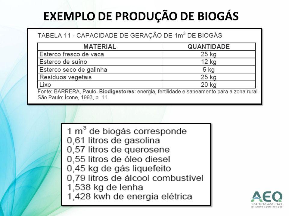 EXEMPLO DE PRODUÇÃO DE BIOGÁS