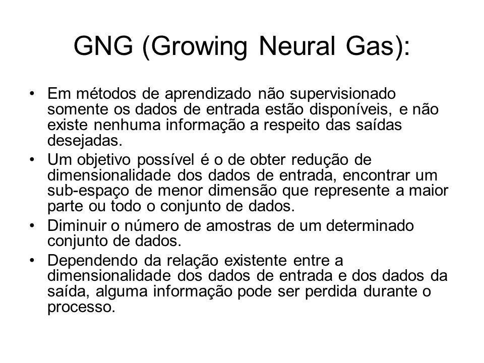 GNG (Growing Neural Gas):