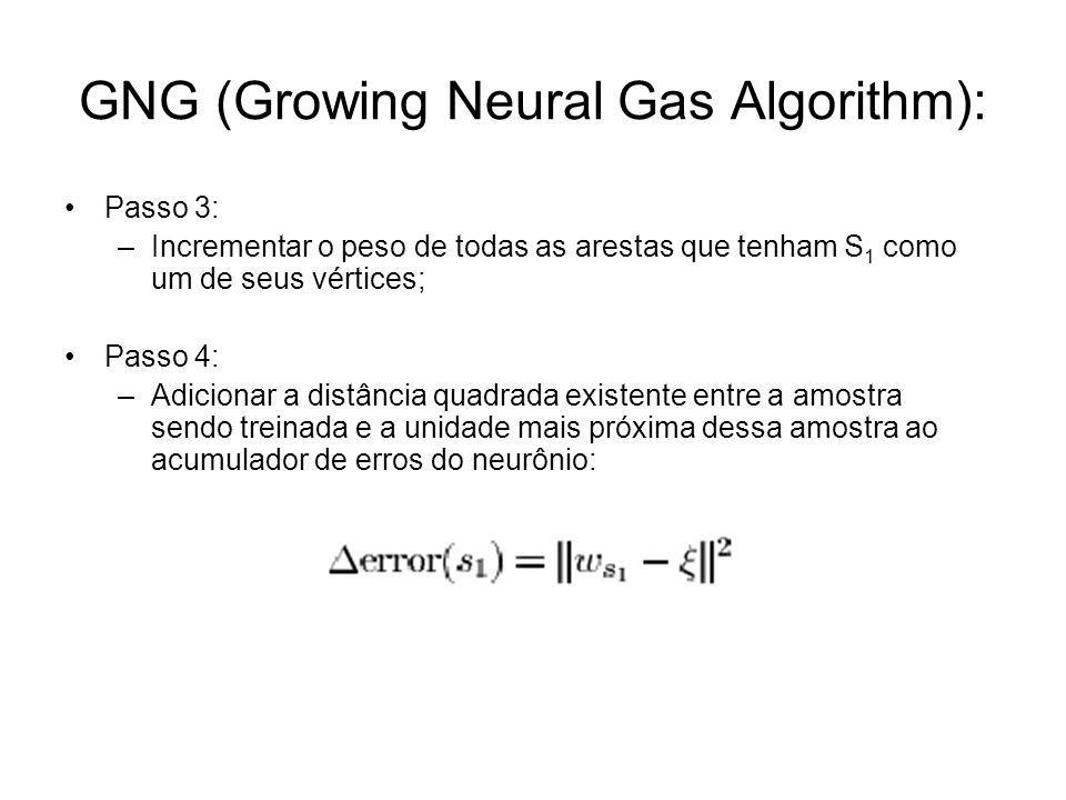 GNG (Growing Neural Gas Algorithm):