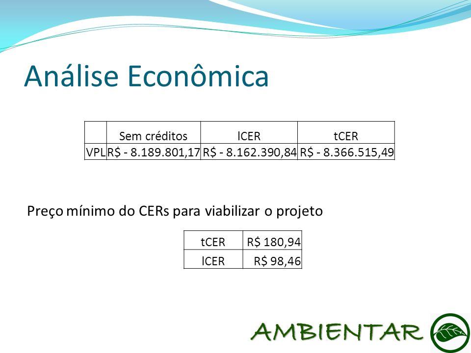 Análise Econômica AMBIENTAR