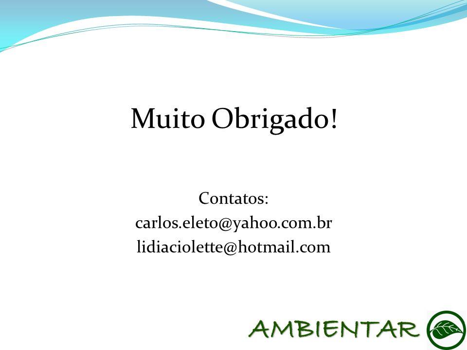 Muito Obrigado! AMBIENTAR Contatos: carlos.eleto@yahoo.com.br