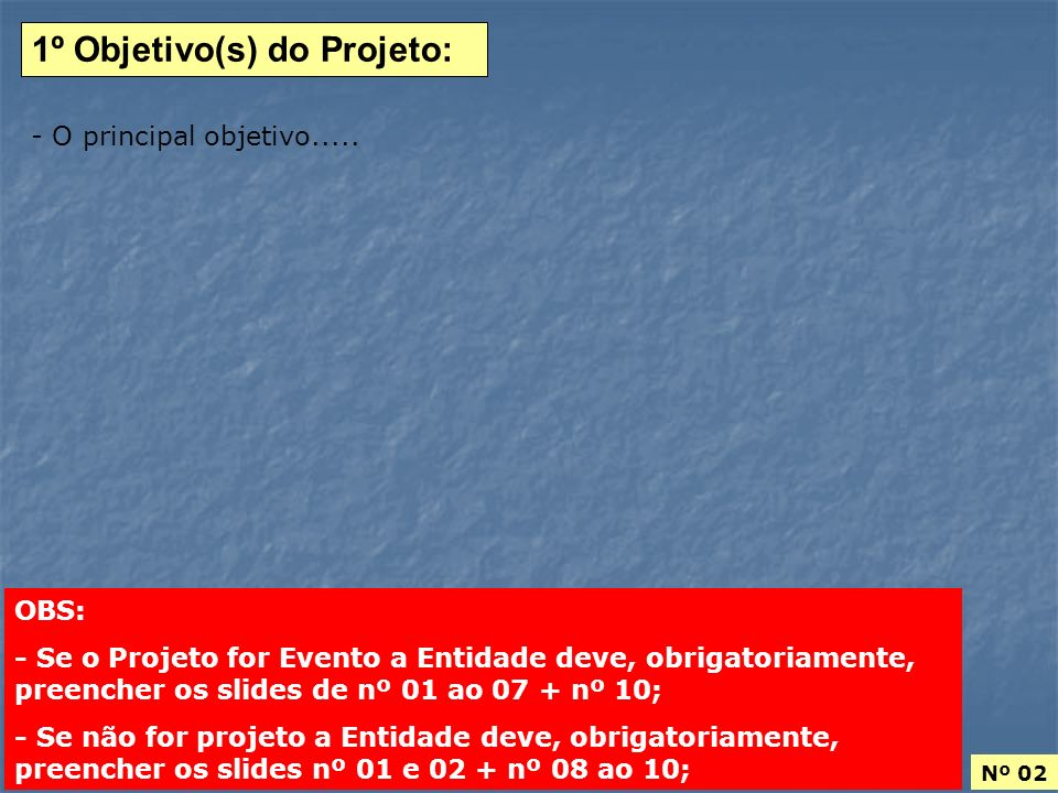 1º Objetivo(s) do Projeto: