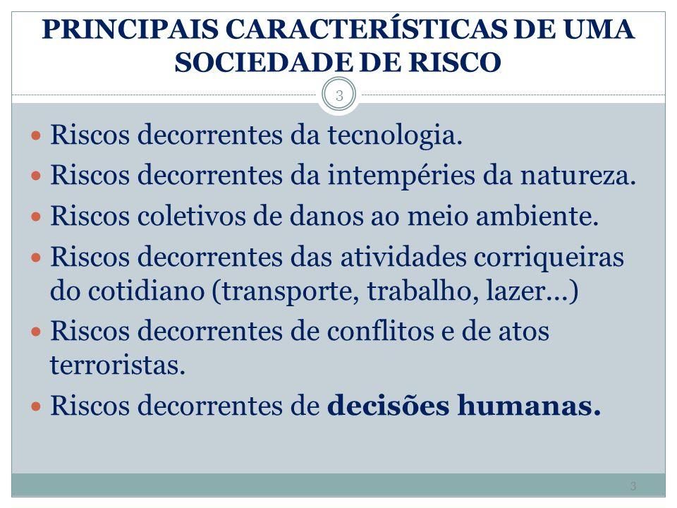 PRINCIPAIS CARACTERÍSTICAS DE UMA SOCIEDADE DE RISCO