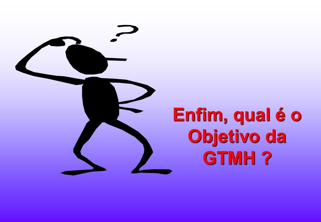 Enfim, qual é o Objetivo da GTMH