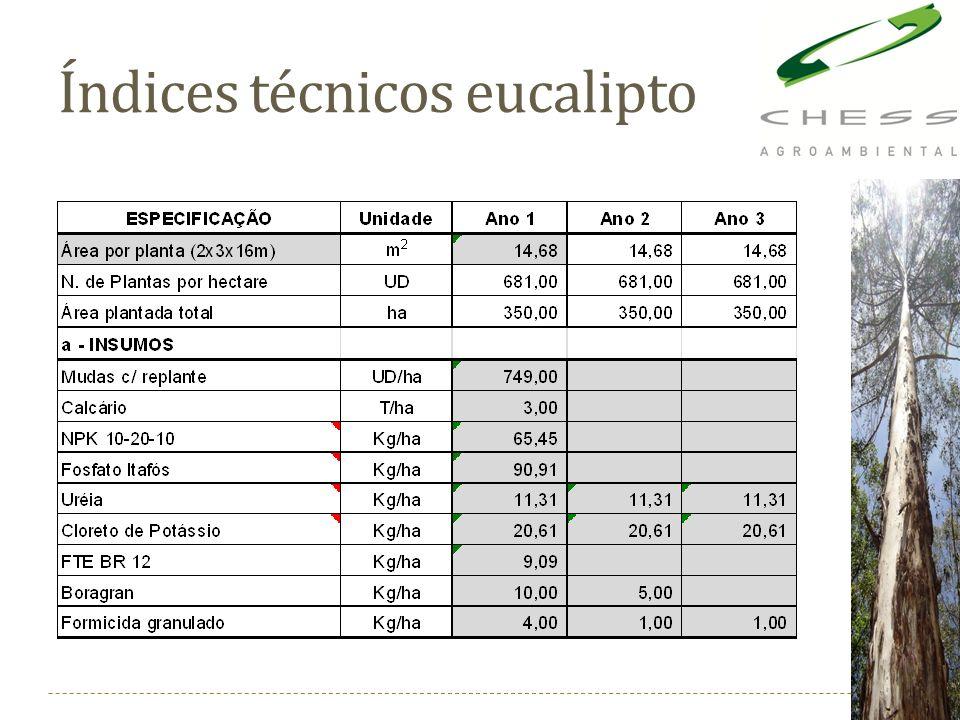 Índices técnicos eucalipto