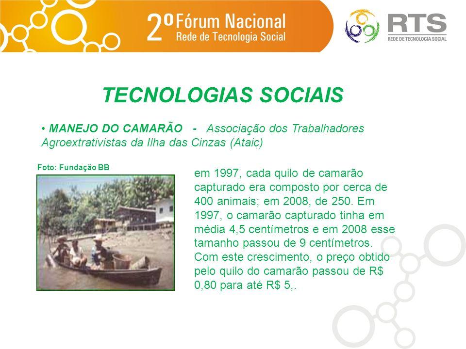 TECNOLOGIAS SOCIAIS MANEJO DO CAMARÃO - Associação dos Trabalhadores Agroextrativistas da Ilha das Cinzas (Ataic)