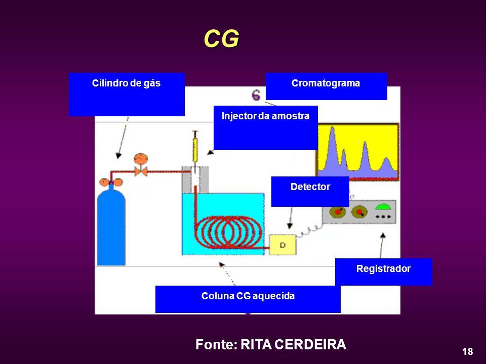 CG Fonte: RITA CERDEIRA Cilindro de gás Injector da amostra