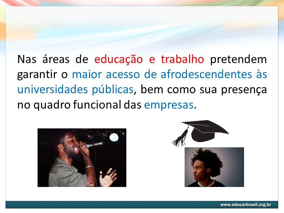 Nas áreas de educação e trabalho pretendem garantir o maior acesso de afrodescendentes às universidades públicas, bem como sua presença no quadro funcional das empresas.