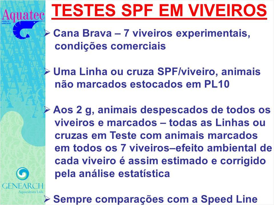 TESTES SPF EM VIVEIROS Cana Brava – 7 viveiros experimentais,