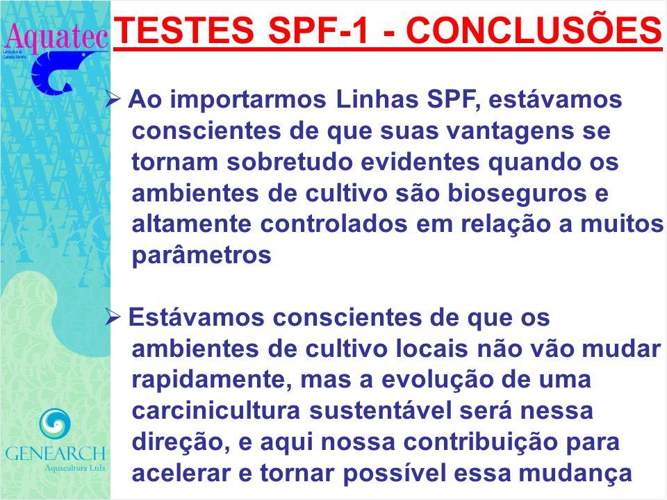 TESTES SPF-1 - CONCLUSÕES
