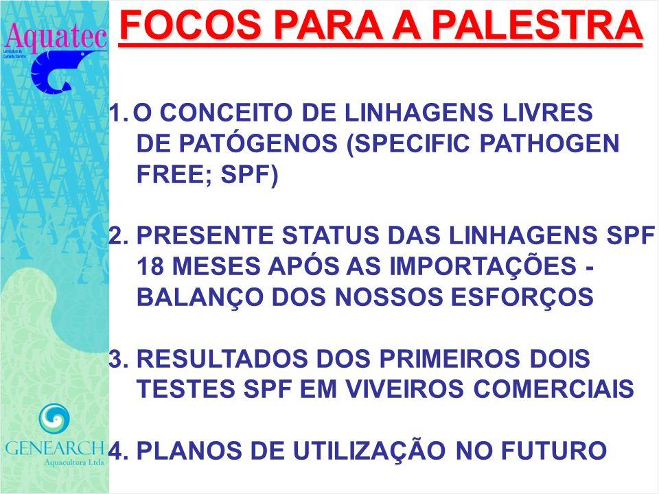FOCOS PARA A PALESTRA O CONCEITO DE LINHAGENS LIVRES