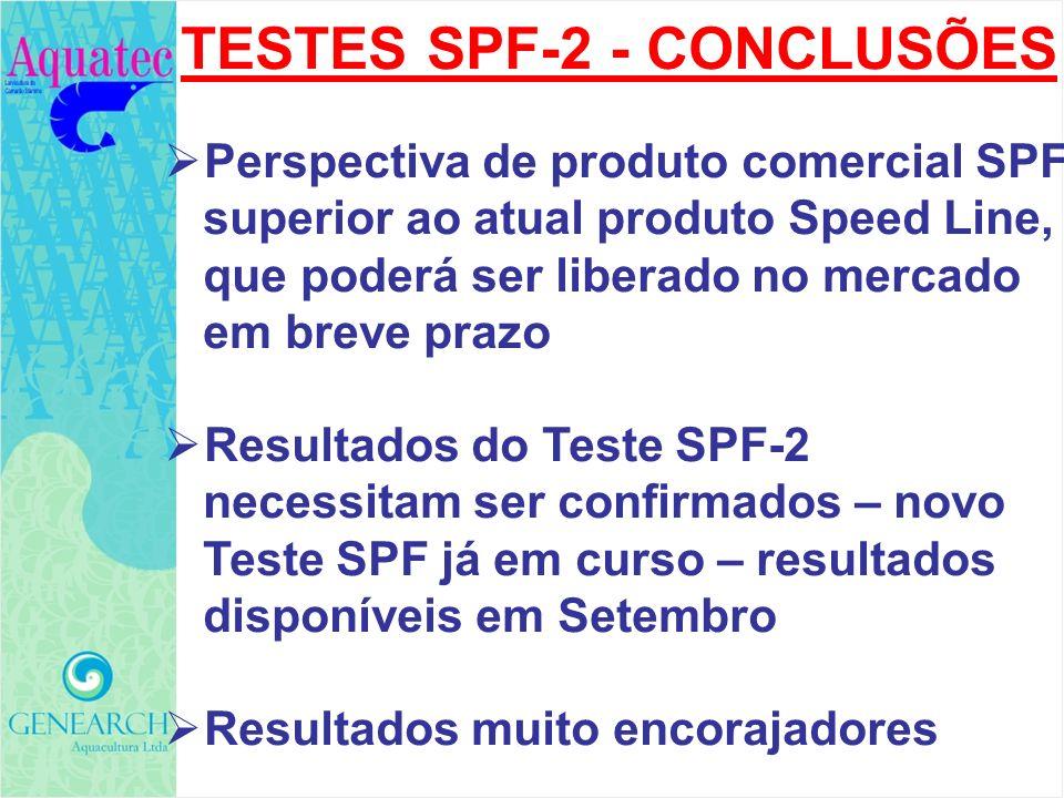 TESTES SPF-2 - CONCLUSÕES