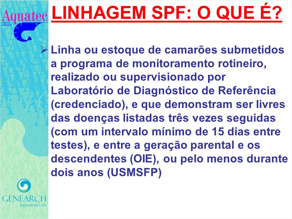 LINHAGEM SPF: O QUE É Linha ou estoque de camarões submetidos