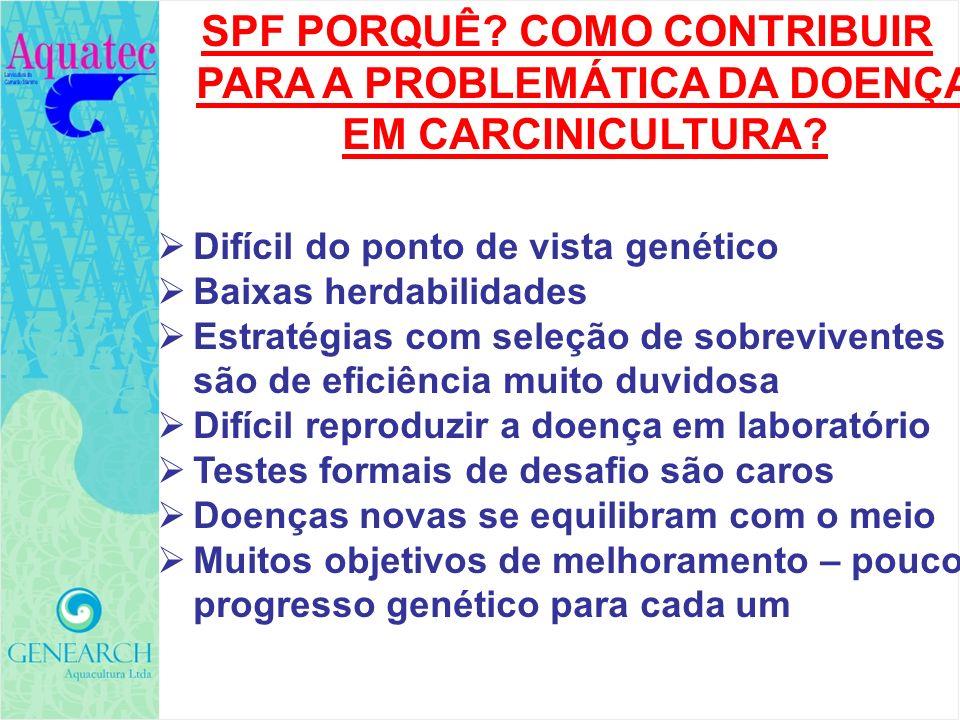 SPF PORQUÊ COMO CONTRIBUIR PARA A PROBLEMÁTICA DA DOENÇA EM CARCINICULTURA