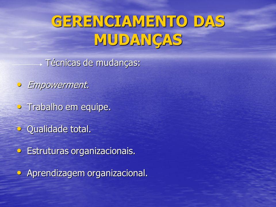 GERENCIAMENTO DAS MUDANÇAS