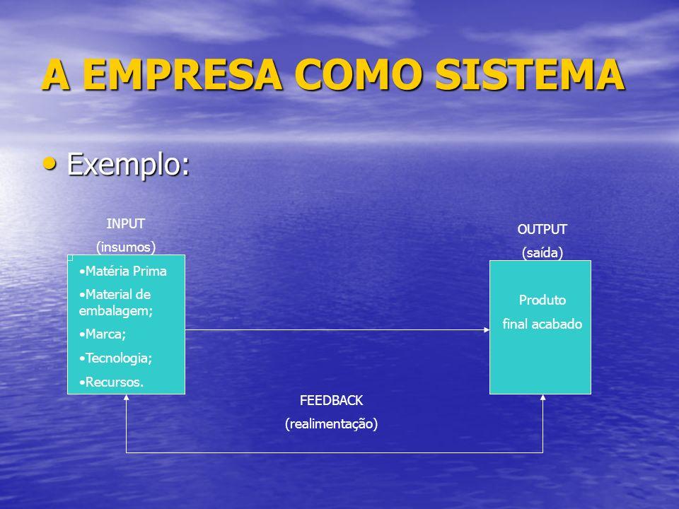 A EMPRESA COMO SISTEMA Exemplo: INPUT OUTPUT (insumos) (saída)